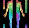 liste-von-kennmuskeln