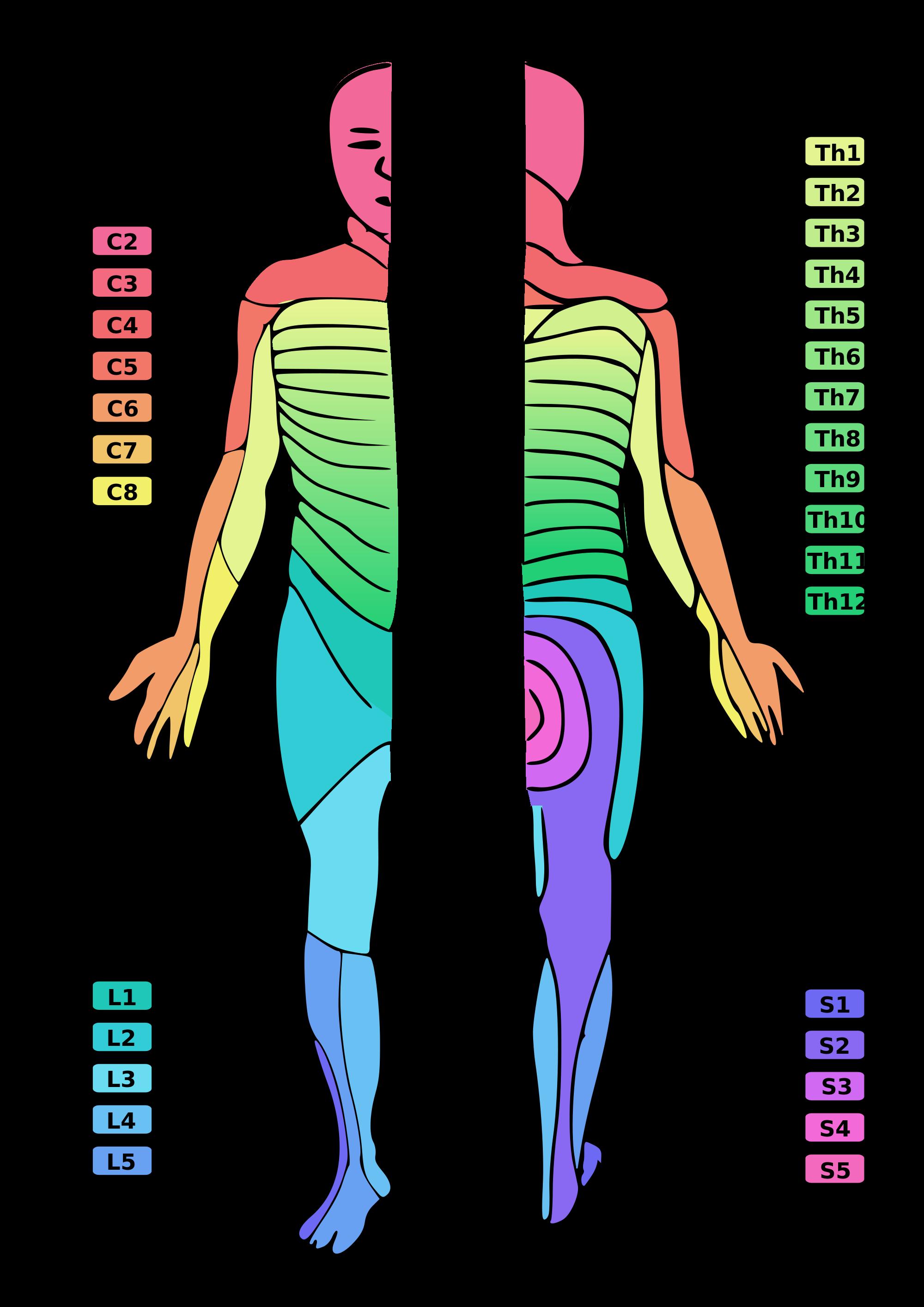 hernia s1 symptomen