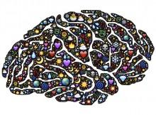 bewusstsein-und-gehirn